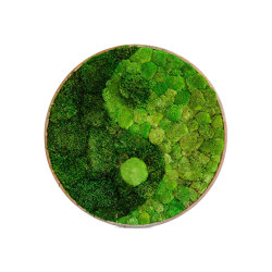 Round Moss Pictures | Yin Yang Moss Picture With Ball Moss And Provence Moss | Sound absorbing objects | Ekomoss