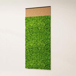 Hyphen | Objetos fonoabsorbentes | Greenmood