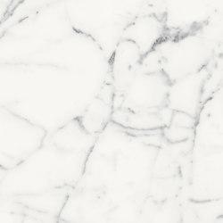 Les Origines de Rex | Origines blanc | Carrelage céramique | FLORIM