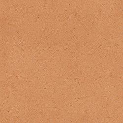 Centra | Sedna T14 | Vinyl flooring | IVC Commercial