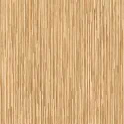 Concept 70 | Bolivia T31 | Vinyl flooring | IVC Commercial