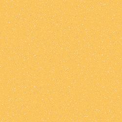 Concept 70 | Populo T55 | Vinyl flooring | IVC Commercial