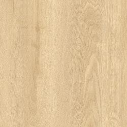 Concept 70 | Elias T32 | Vinyl flooring | IVC Commercial
