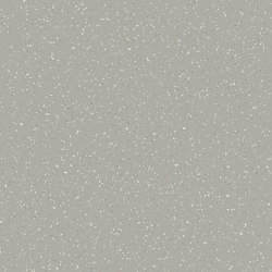 Isafe 70 | Design - Populo Mineral 595 | Vinyl flooring | IVC Commercial
