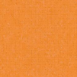 Optimise 70 | Ombra T65 | Vinyl flooring | IVC Commercial