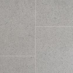 Planet | Arena 609 | Vinyl flooring | IVC Commercial