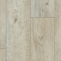 Tempo | Foxtail Pine W92 | Vinyl flooring | IVC Commercial