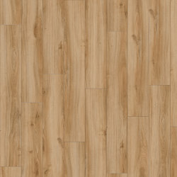 Moduleo 40 | Classic Oak 24837 | Synthetic panels | IVC Commercial