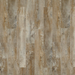 Moduleo 40   Country Oak 24277   Lastre plastica   IVC Commercial