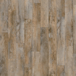 Moduleo 40 | Country Oak 24958 | Synthetic panels | IVC Commercial