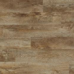 Moduleo 55 Impressive | Country Oak 54852 | Lastre plastica | IVC Commercial