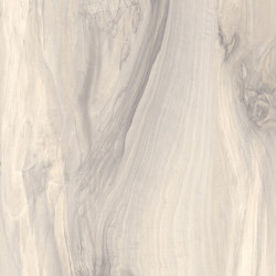 Moduleo 55 Tiles | River Wood 46137 | Synthetic panels | IVC Commercial