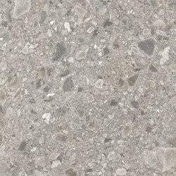 Moduleo 55 Tiles | Ceppo 46151 | Lastre plastica | IVC Commercial