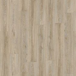 Moduleo 55 Woods | Blackjack Oak 22246 | Synthetic panels | IVC Commercial