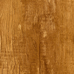 Moduleo 55 Woods | Country Oak 24432 | Synthetic panels | IVC Commercial