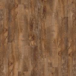 Moduleo 55 Woods | Country Oak 24456 | Lastre plastica | IVC Commercial