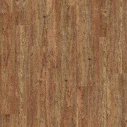 Moduleo 55 Woods | Latin Pine 24874 | Kunststoff Platten | IVC Commercial