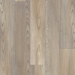 Moduleo 55 Woods | Mexican Ash 20245 | Synthetic panels | IVC Commercial