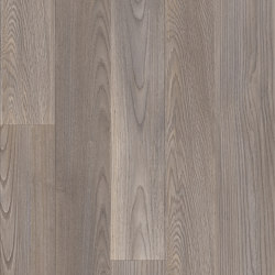 Moduleo 55 Woods   Mexican Ash 20965   Synthetic panels   IVC Commercial