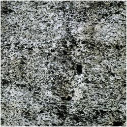 Translucent | Argento | Placages | Slate Lite