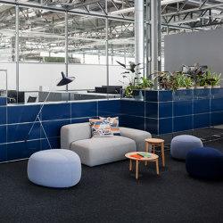 USM Haller Reception with Protection Screen and World of Plants   Steel Blue   Pots de fleurs   USM
