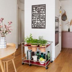 USM Haller Serving Cart with World of Plants | USM Ruby Red | Trolleys | USM