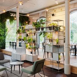 USM Haller Shelving with World of Plants | Light Gray | Shelving | USM