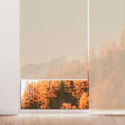 Niesen 0100 | Dekorstoffe | Kvadrat Shade
