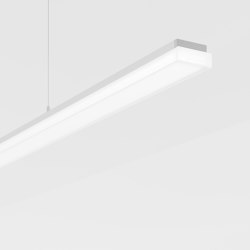 Purelite Slim | Suspended lights | Regent Lighting