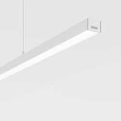 Purelite Slim D | Suspended lights | Regent Lighting