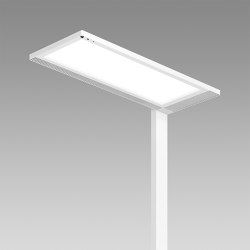 Lightpad Office | Standleuchten | Regent Lighting