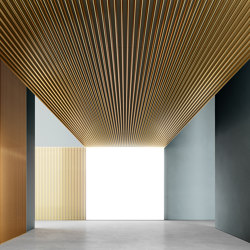 DresswallStripes | LN8 | Suspended ceilings | Dresswall