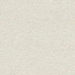 Achilles MD329A00 | Upholstery fabrics | Backhausen