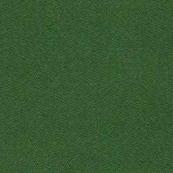 Achilles MD329A16 | Upholstery fabrics | Backhausen