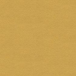 Artus MD157A01 | Drapery fabrics | Backhausen
