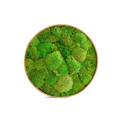 Round Moss Pictures | Moss Picture With Ball Moss 90 cm | Sound absorbing objects | Ekomoss