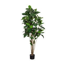 Artificial Plants | Ficus Robusta | Artificial plants | Götessons