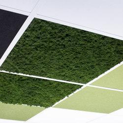 Tiles moss | Ceiling panels | Götessons