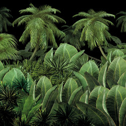 Scent of silence   A night in the jungle   Wall coverings / wallpapers   Walls beyond