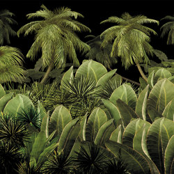 Scent of silence | A night in the jungle_warmer | Wall coverings / wallpapers | Walls beyond