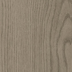 Form Woods - 0,7 mm I Barrel Oak Grey | Synthetic tiles | Amtico