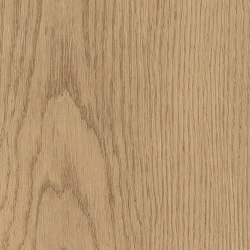 Form Woods - 0,7 mm I Barrel Oak Rye | Synthetic tiles | Amtico