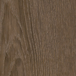 Form Woods - 0,7 mm I Bister Oak | Synthetic tiles | Amtico