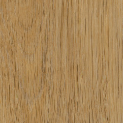 Form Woods - 0,7 mm I Amber Oak | Synthetic tiles | Amtico