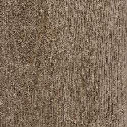 Form Woods - 0,7 mm I Native Grey Wood   Synthetic tiles   Amtico