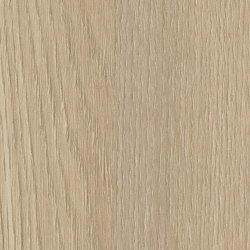 Light Springfield Oak | Wood panels | Pfleiderer