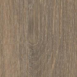 Italian Oak | Planchas de madera | Pfleiderer