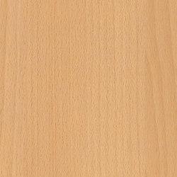 Altmuehl Beech | Wood panels | Pfleiderer