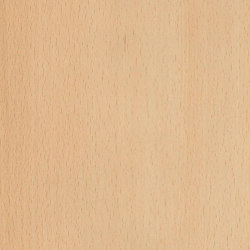 Bloomed Beech | Planchas de madera | Pfleiderer