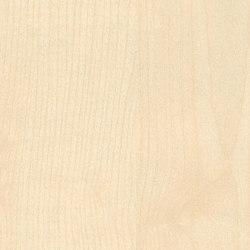 Light Maple | Wood panels | Pfleiderer